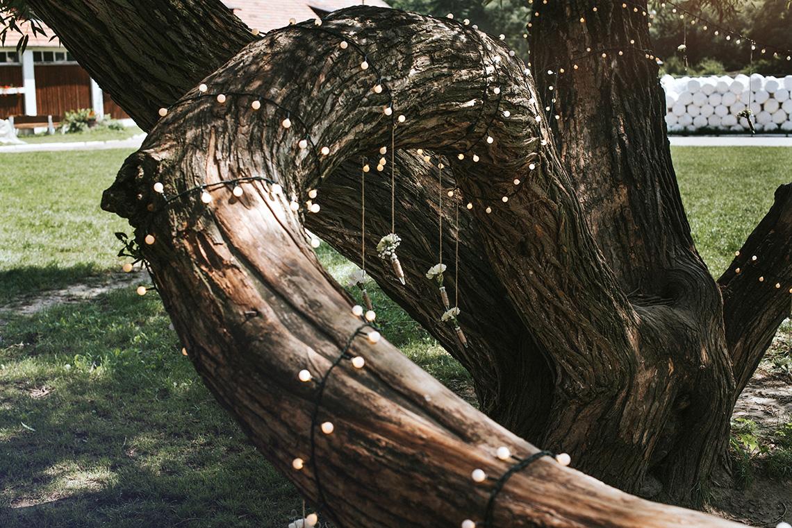 oświetlenie na drzewie w ogrodzie