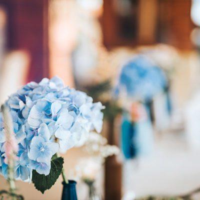 dekoracje z hortensji